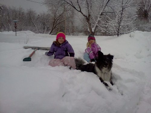 kids playing with dog in snow